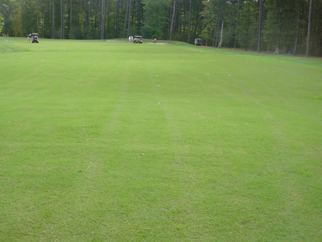 Patriot For Golf Courses Oakwood Sod Farm